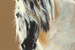 Selling: Original Horse Portrait