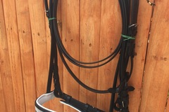 Selling: Bridle free shipping V diamond show comes with reins