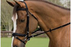 Selling: New English Bridle Quick Sale