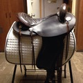 """Selling: Schleese Trail Saddle 16"""""""