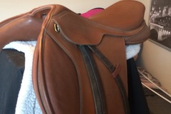 Selling: Wintec English Saddle with Pad