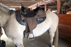"Selling: Light Weight Saddle 15"""