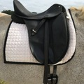 Selling: Dressage Starter Saddle and Kit 17""