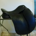 Selling: Schleese Infinity II Saddle 17.5""