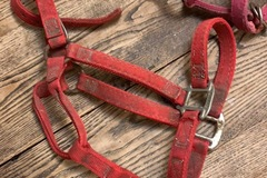 Selling: Nylon and Rope Halters