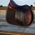 Selling: Schleese Jete Jumping Saddle 17""