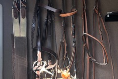 Selling: Two Bridles Breast Collar and Girth