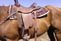 Selling: Santa Fe Saddle 16""