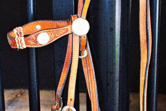 Selling: Show Bridle, Reigns, Bit, and Breast Collar