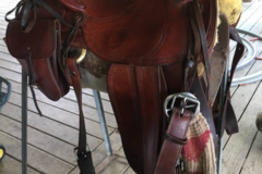 Selling: John Fallis Natural Balance Saddle 15.5""