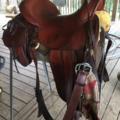 """Selling: John Fallis Natural Balance Saddle 15.5"""""""