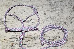 Selling: Mule tape halter
