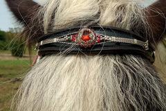 Selling: Stunning Custom Made Gypsy Vanner Stud Show Tack