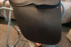 "Selling: 15.5"" Borelli cutback gaited saddle"