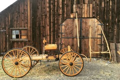 Selling: Parade Ready - New Buckboard