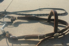 Selling: Draft browband headstall